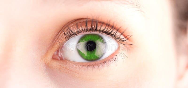 Detaljerat slut upp av ett grönt öga i hög definition royaltyfria foton