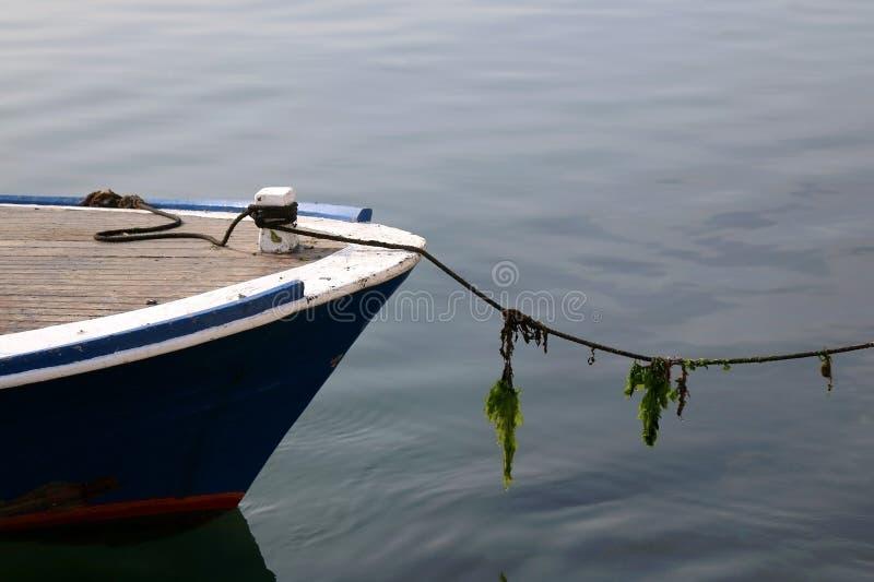 detaljmexico för blått fartyg karibiskt vatten royaltyfri fotografi