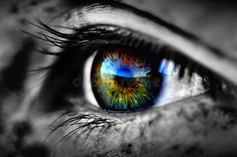 Detalle asustadizo del ojo fotos de archivo