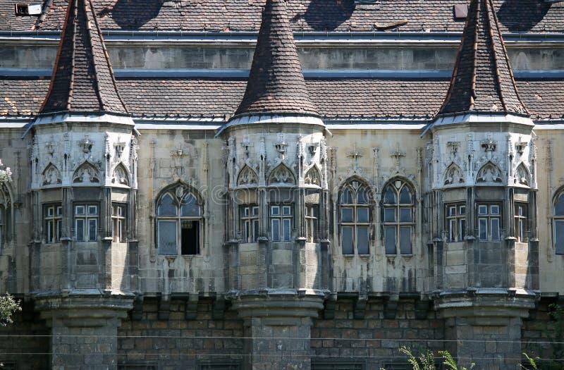 Detalle Budapest Hungría de la pared del castillo fotografía de archivo libre de regalías