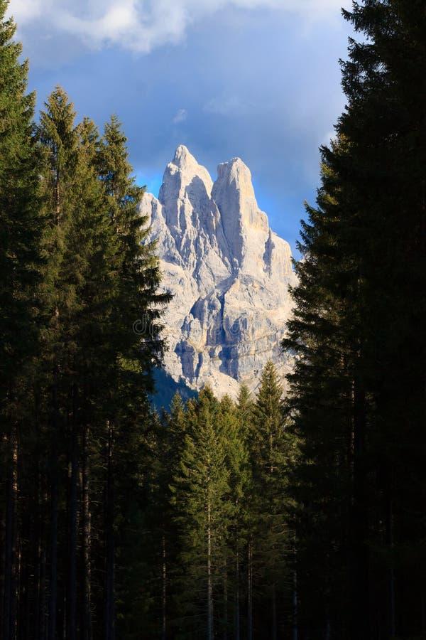 Detalle de la alta montaña fotografía de archivo