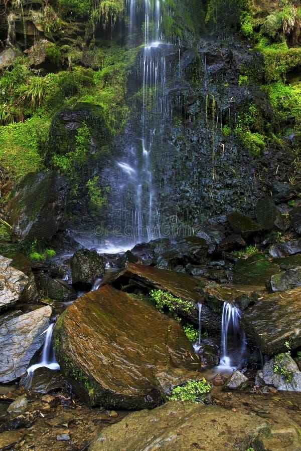 Detalle de la cascada del canalón de Mallyan que se derrama sobre el musgo y las rocas, Goathland fotografía de archivo