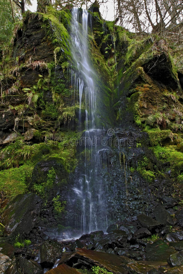 Detalle de la cascada del canalón de Mallyan que se derrama sobre el musgo y las rocas, Goathland fotos de archivo