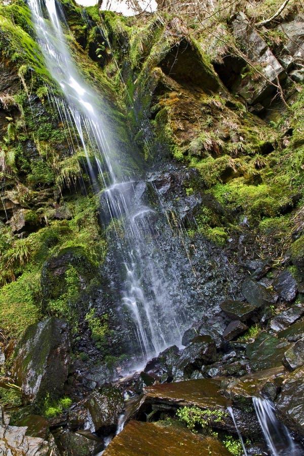 Detalle de la cascada del canalón de Mallyan que se derrama sobre el musgo y las rocas, Goathland imágenes de archivo libres de regalías