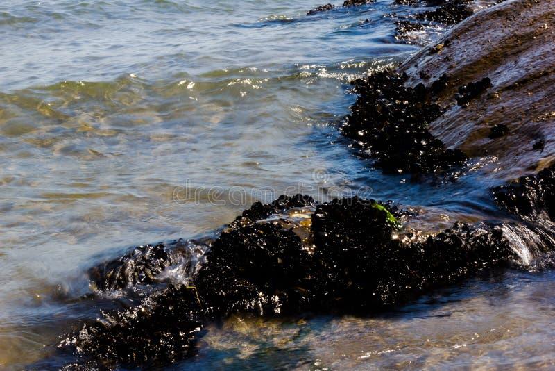 detalle de la playa con las rocas en verano fotografía de archivo