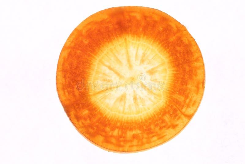 Detalle de la zanahoria fotos de archivo