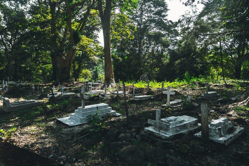 Detalle de muchas cruces puestas sobre sus tumbas respectivas en imagen de archivo libre de regalías