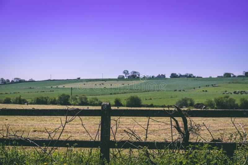 Detalle de una cerca con electrificado atado con alambre en el campo irlandés fotografía de archivo