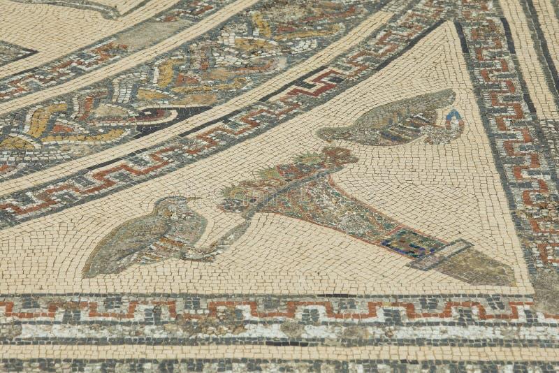 Detalle del mosaico romano antiguo en Volubilis fotografía de archivo