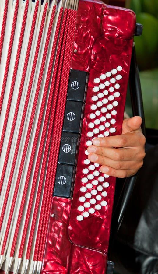 Detalle del primer de las manos que tocan un instrumento rojo del acordeón imagen de archivo libre de regalías