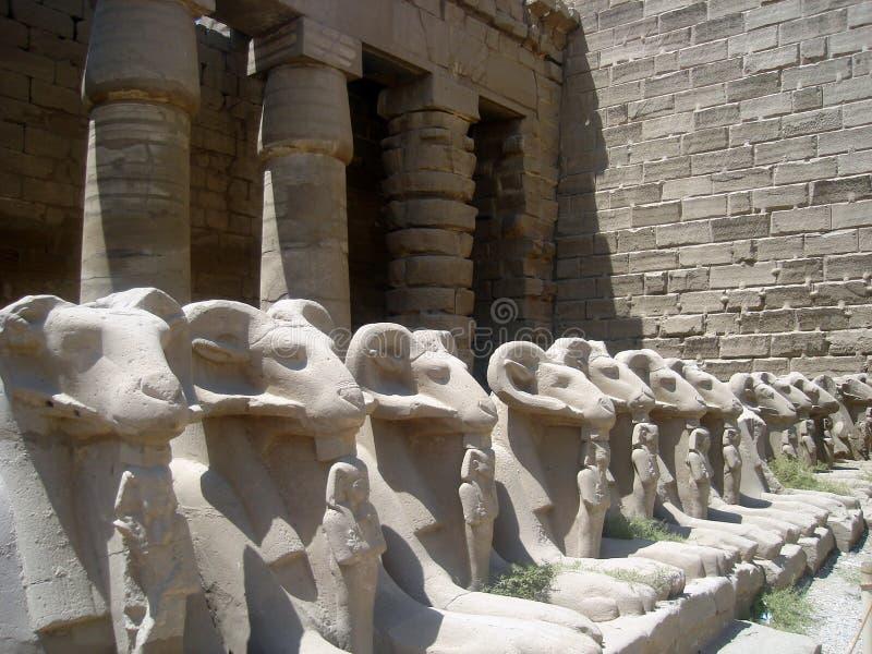 Detalle del templo de Karnak fotografía de archivo libre de regalías