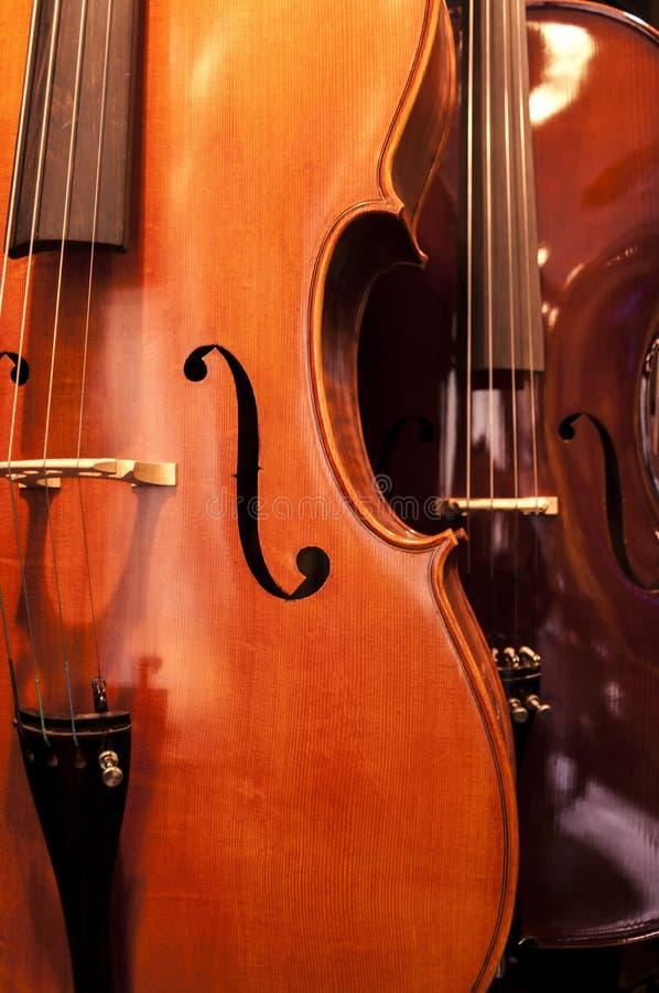 Detalle del violín foto de archivo libre de regalías