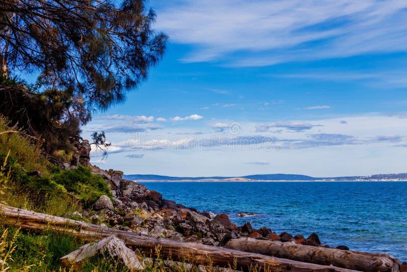 Detalle la vista de la playa tasmana con las rocas y los árboles del arbusto foto de archivo