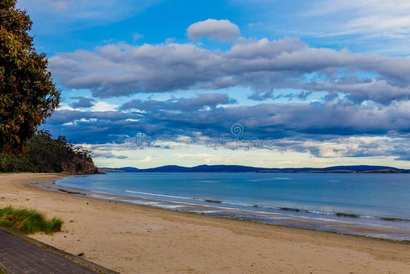 Detalle la vista de la playa tasmana con los árboles de oro de la arena y del arbusto imagenes de archivo