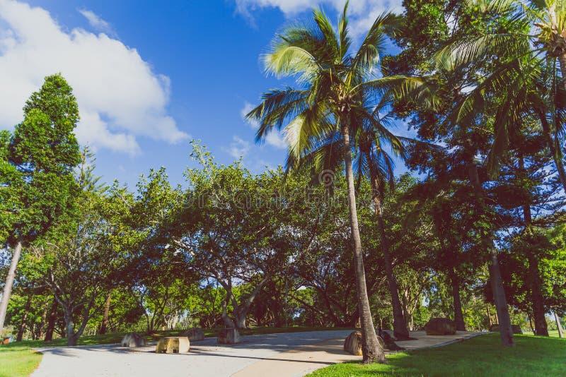 Detalle la vista del Les Rodgers Memorial Park en paraíso de las personas que practica surf foto de archivo