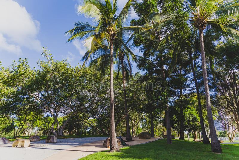 Detalle la vista del Les Rodgers Memorial Park en paraíso de las personas que practica surf imagen de archivo