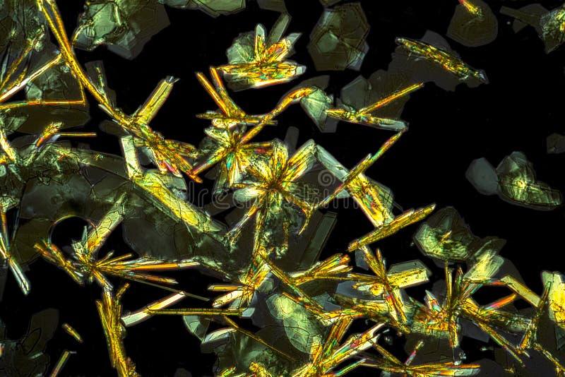 Detalle microscópico de los microcrystals de la auramina O foto de archivo libre de regalías