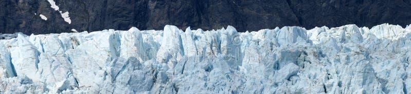 Detalle panorámico Alaska del primer de la bahía de glaciar fotos de archivo