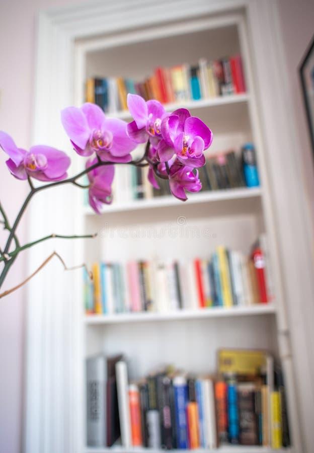 Detalle retro del estante para libros del apartamento imágenes de archivo libres de regalías