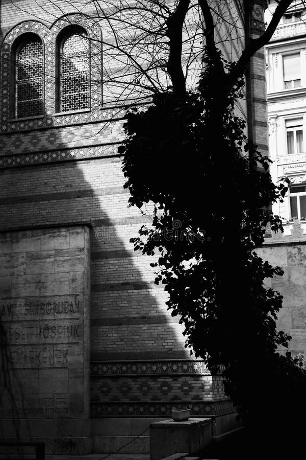 Detalles blancos y negros de la arquitectura de la foto de la sinagoga de Budapest, sinagoga de Dohany en Budapest, Hungría imagen de archivo libre de regalías