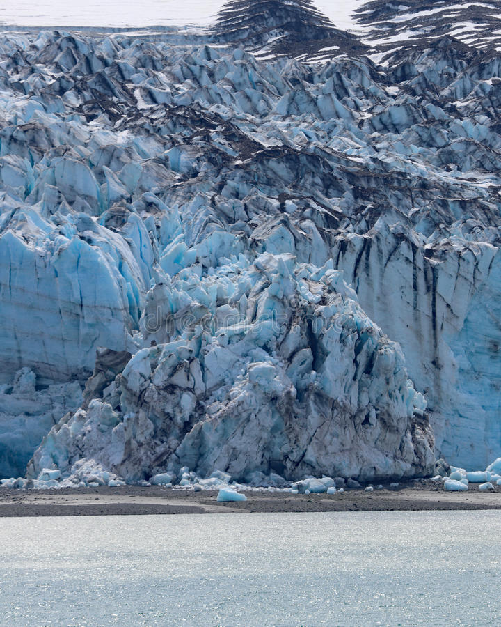 Detalles del primer del parque nacional del Glacier Bay, Alaska fotos de archivo libres de regalías