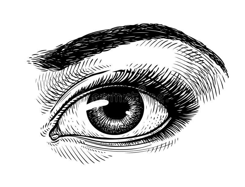 detdrog härliga kvinnliga ögat, skissar Makeup symbol för skönhetsalong Tappningvektorillustration royaltyfri illustrationer