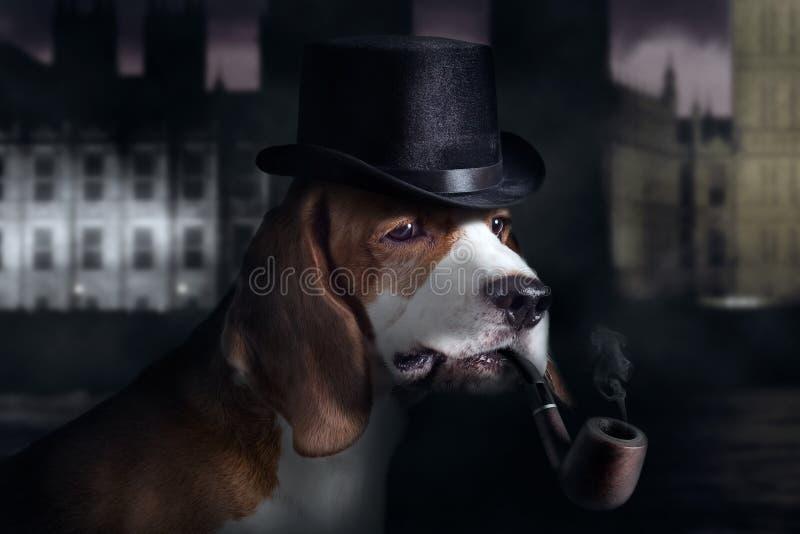 Detective stock foto's