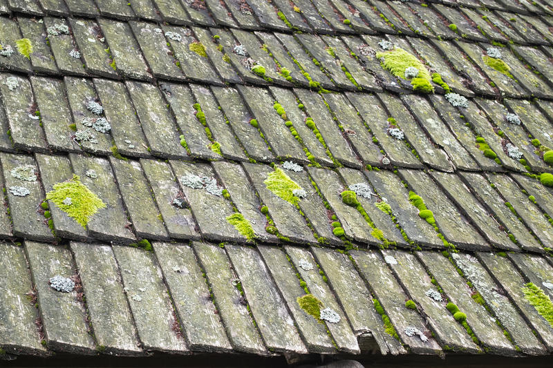 Deteriorated shingles roof royalty free stock photos