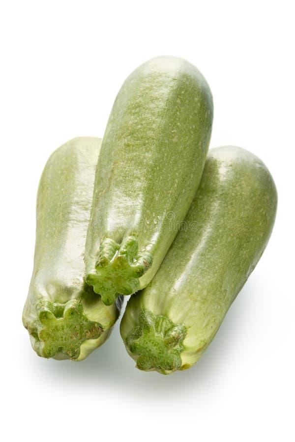 Determinadas espécies de abóbora vegetais fotos de stock royalty free