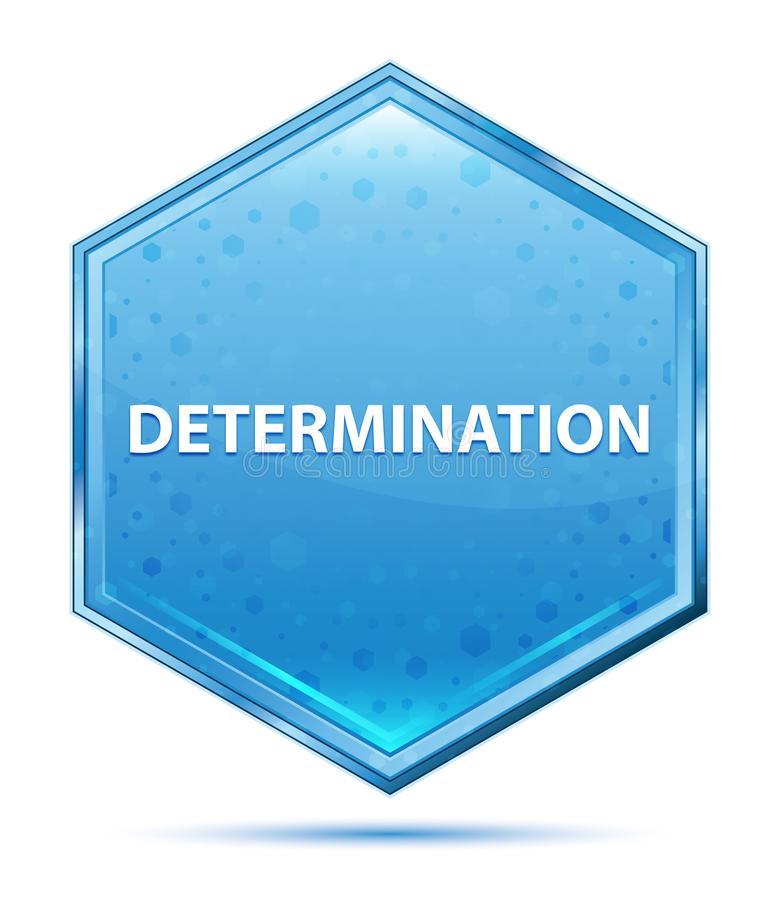 Determination crystal blue hexagon button. Determination Isolated on crystal blue hexagon button vector illustration