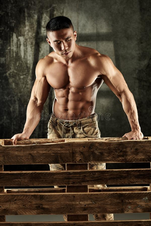 Determined bodybuilder standing behind pallet royalty free stock image