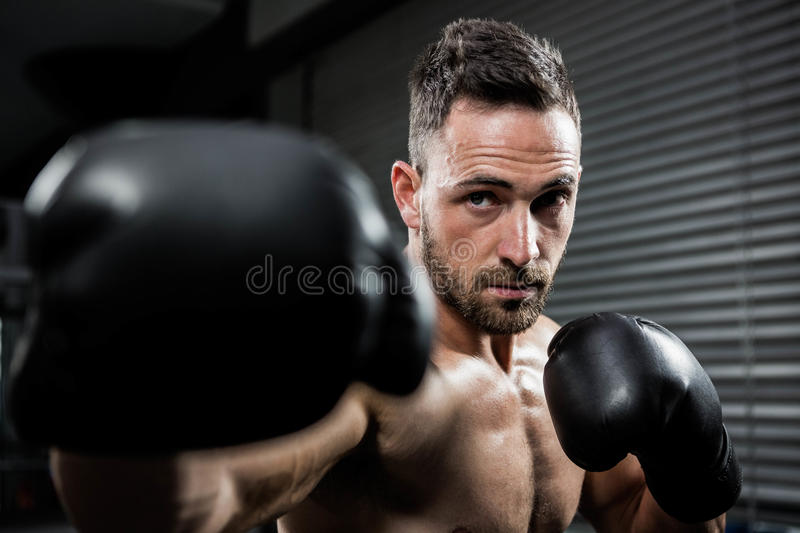 Determined shirtless man with boxe gloves hitting. At crossfit gym royalty free stock image