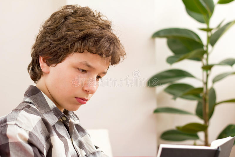 Determined To Read Stock Images
