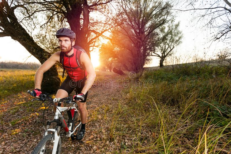 Determined young man riding mountain bike in a park stock photos