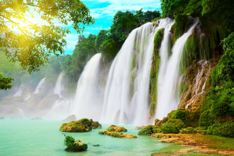 Download Detian waterfall stock photo. Image of foliage, plants - 10810496