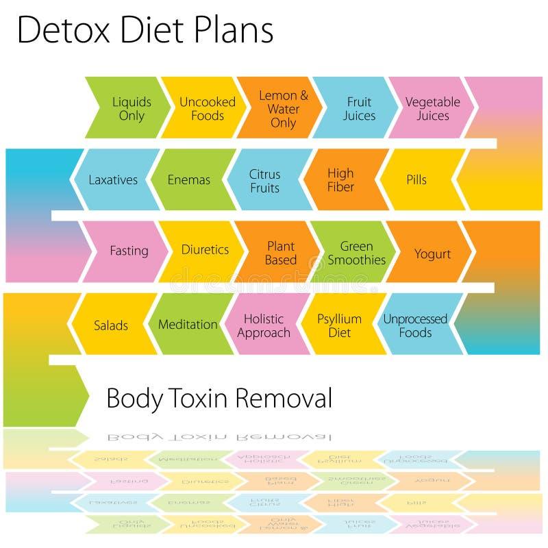 Detox Diet Plans Chart. An image of a detox diet plan chart vector illustration