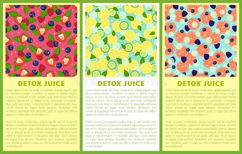 Detox Juice Poster Ingredients de boisson régénératrice illustration stock