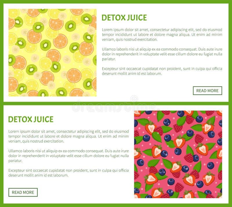 Detox Juice Poster Ingredients de boisson régénératrice illustration libre de droits