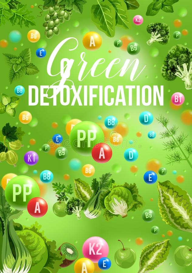 Detox koloru diety plakat z zielonym dnia jedzenia menu royalty ilustracja