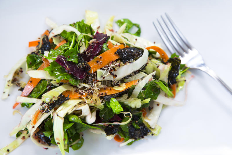 Detox Salad. A Raw/Vegan Detox Salad royalty free stock photography