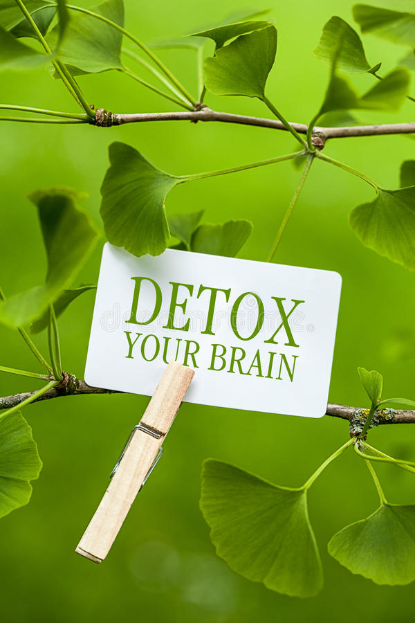 Detox your Brain royalty free stock photos