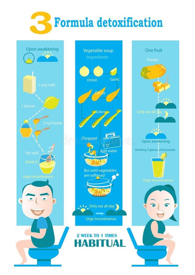 Detoxification diet recipes vector illustration