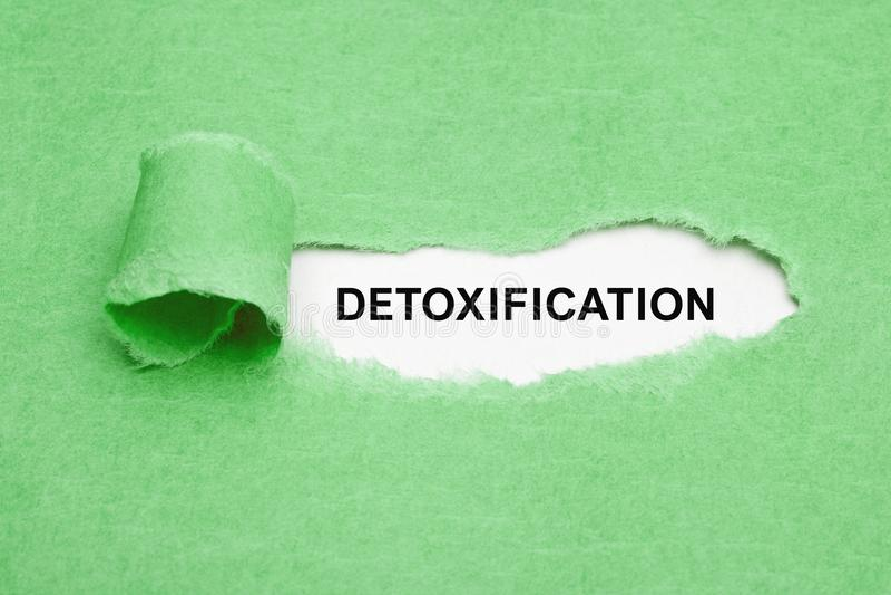 Detoxification zieleń Drzejący Papierowy pojęcie zdjęcia royalty free