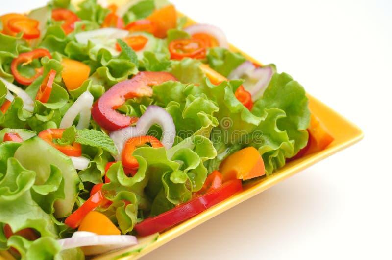 Detoxmat med veggie, rå sallad royaltyfri fotografi