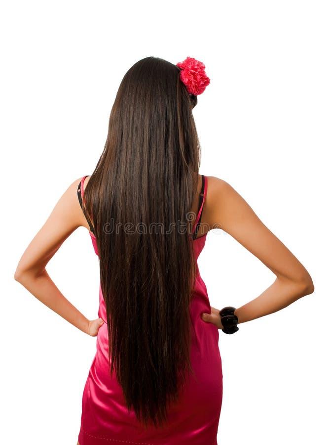 Detrás de la hembra delgada con el pelo largo aislado imagen de archivo libre de regalías