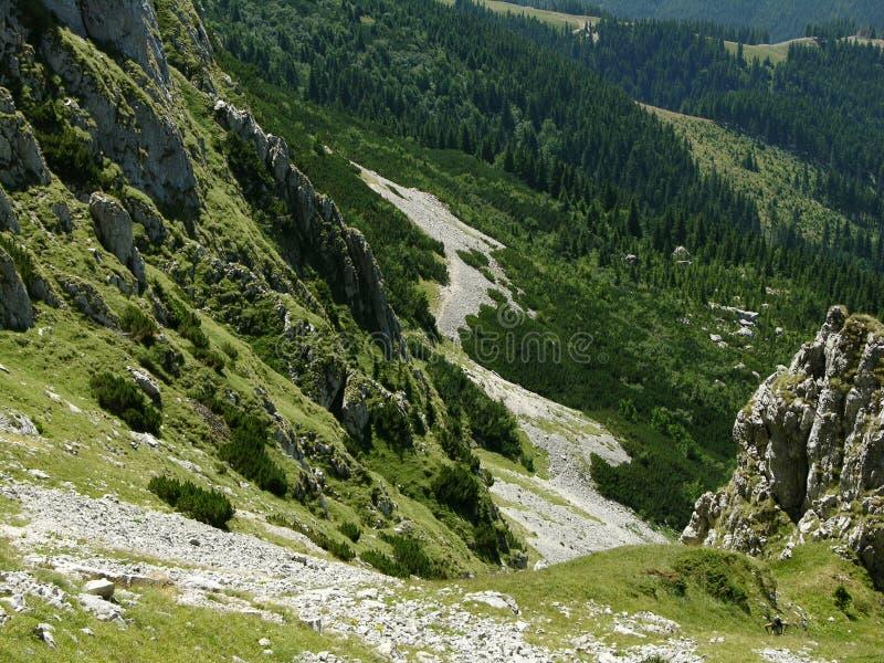 Detritus in Karpaten (Bucegi) lizenzfreies stockfoto
