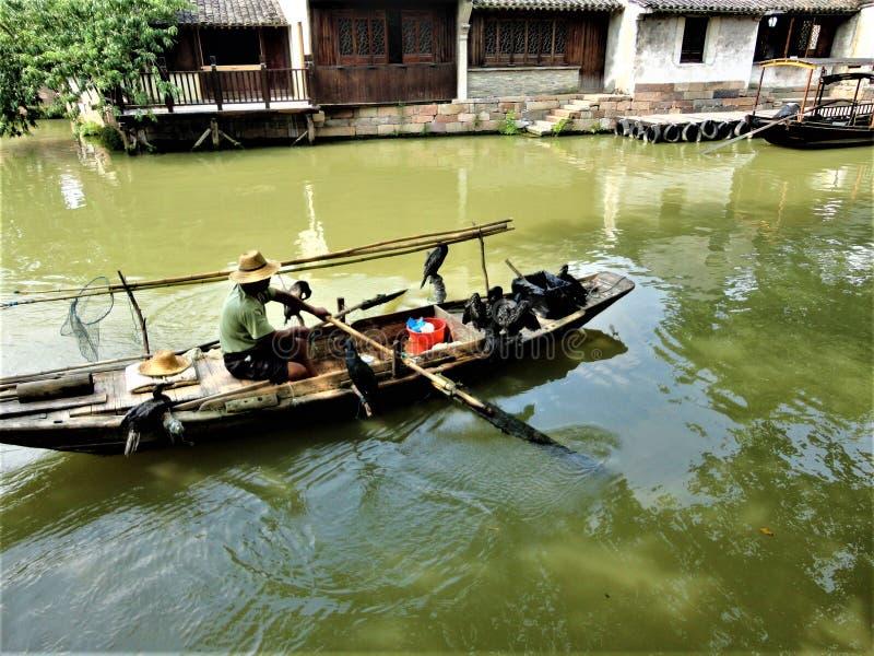 Dettagli cinesi: fiume, costruzioni tradizionali, barca ed uccelli immagine stock