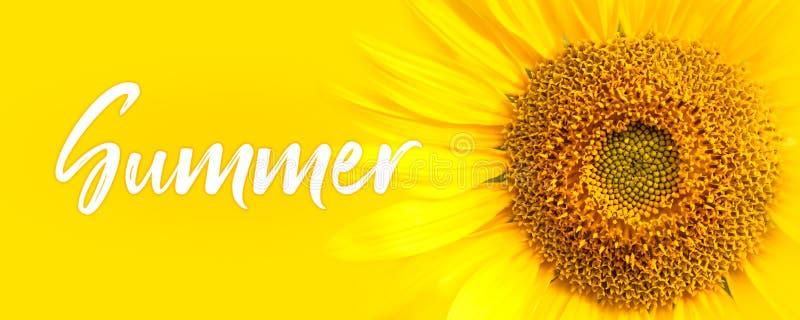 Dettagli del primo piano del testo e del girasole di estate oncept per estate, il sole, il sole, il viaggio tropicale di estate e fotografia stock libera da diritti