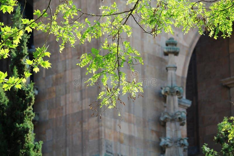 Dettagli della facciata del convento di de San Esteban, Salamanca, Spagna immagine stock