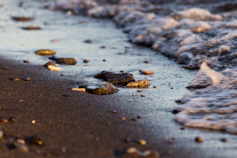 Dettagli della riva del lago immagini stock libere da diritti